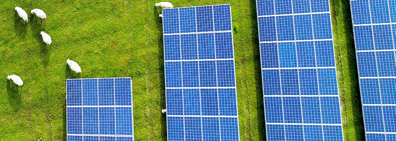 Чем опасны солнечные панели